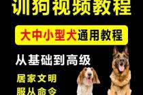 【教程6】狗狗训练视频教程全集18个技巧