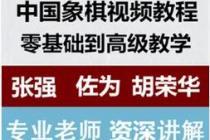 【教程5】佐为张强胡荣华象棋讲座全集视频教程下载